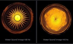 Raise your Vibration with Sound